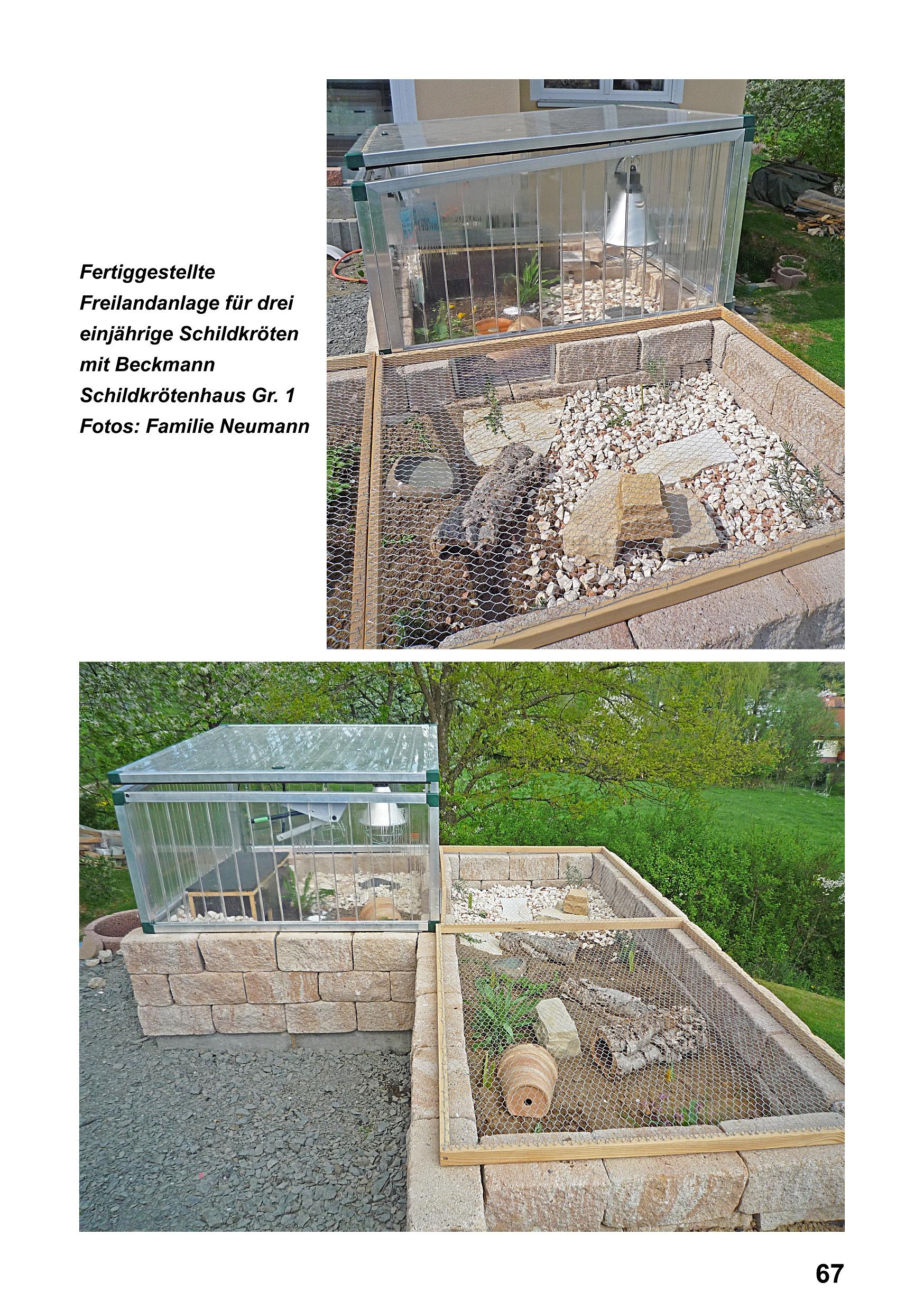 Leseproben: Landschildkröten - Freilandanlagen