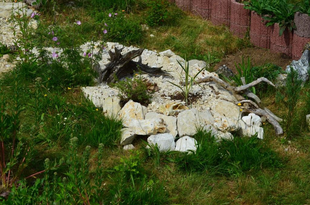 Abb. 2 Inselartig angelegte steinige Areale mit frischer Bepflanzung
