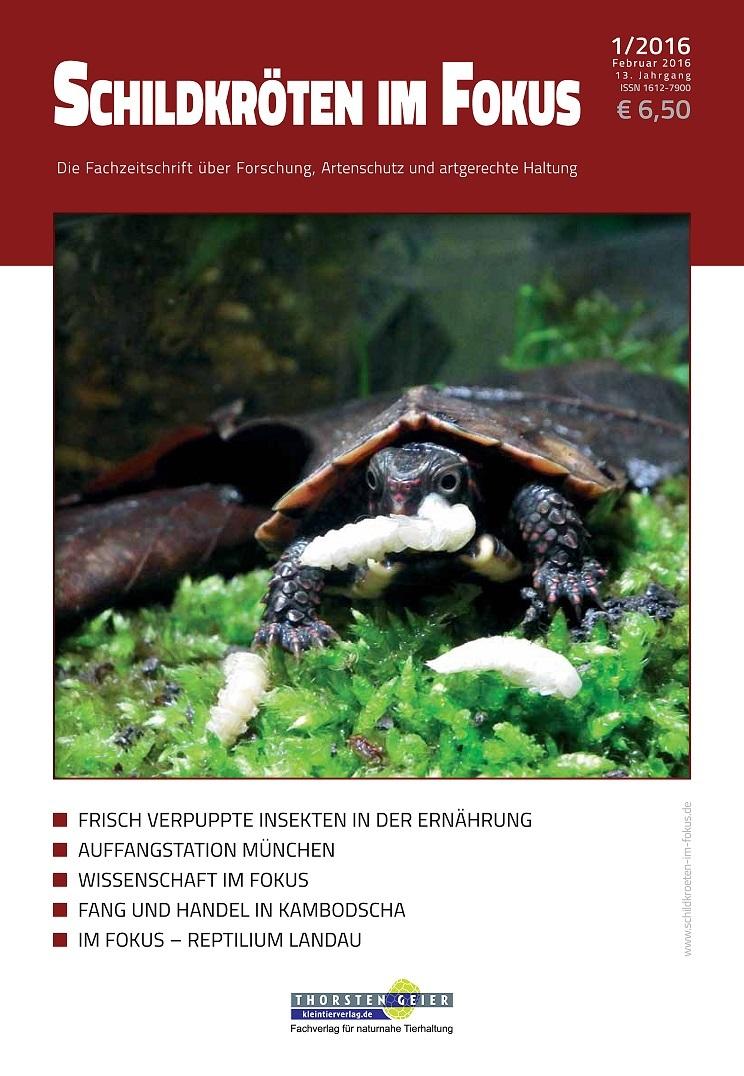 Schildkröten im Fokus - in neuer Hand und neuem Look