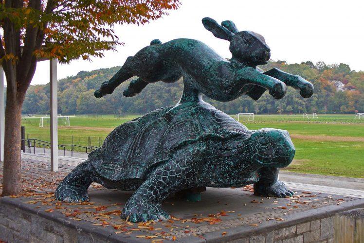 Auf Schildkrötensafari mit Elke Wallrapp (Folge 34)