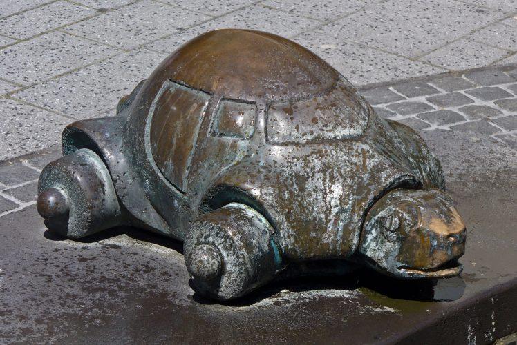 Auf Schildkrötensafari mit Elke Wallrapp (Folge 47)