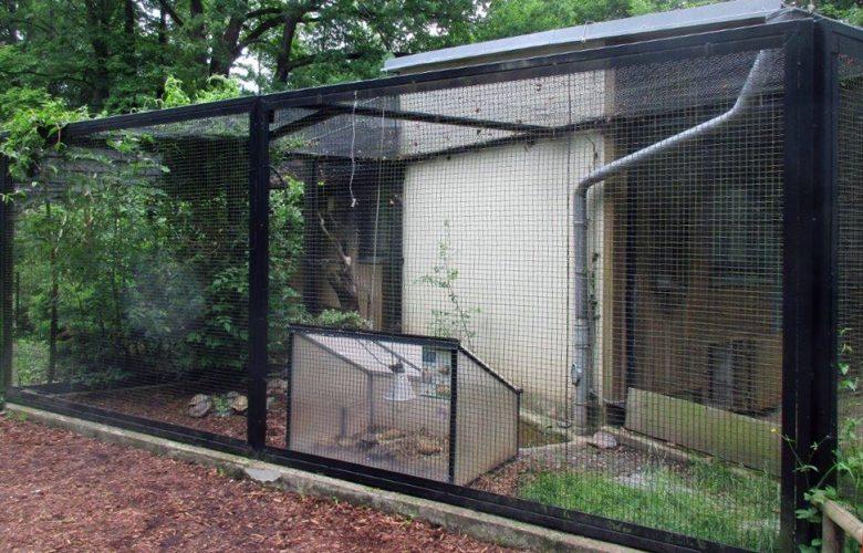 Zu Besuch im Tierpark Chemnitz