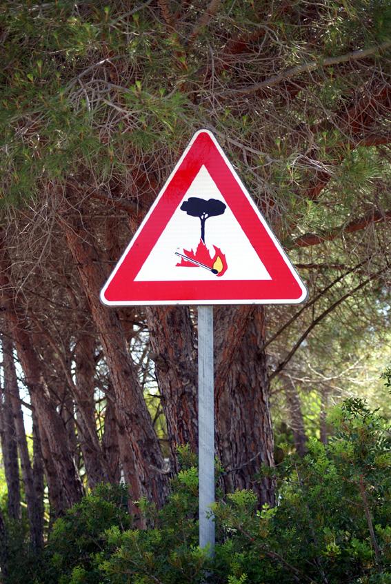 Warum es so fatal ist, wenn Waldbrände im Mittelmeerraum wüten