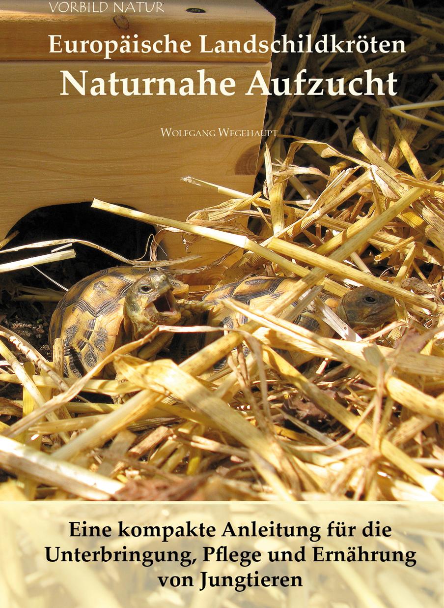Buchankündigung: Europäische Landschildkröten - Naturnahe Aufzucht von Wolfgang Wegehaupt