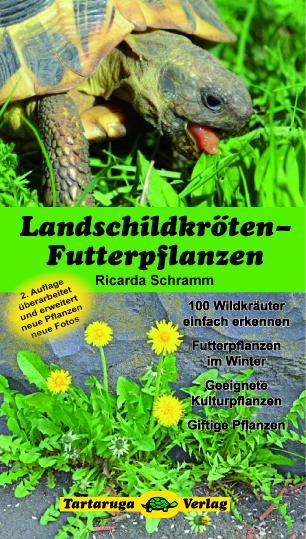 Verlagsankündigung: Ricarda Schramm Landschildkröten-Futterpflanzen 2. Auflage