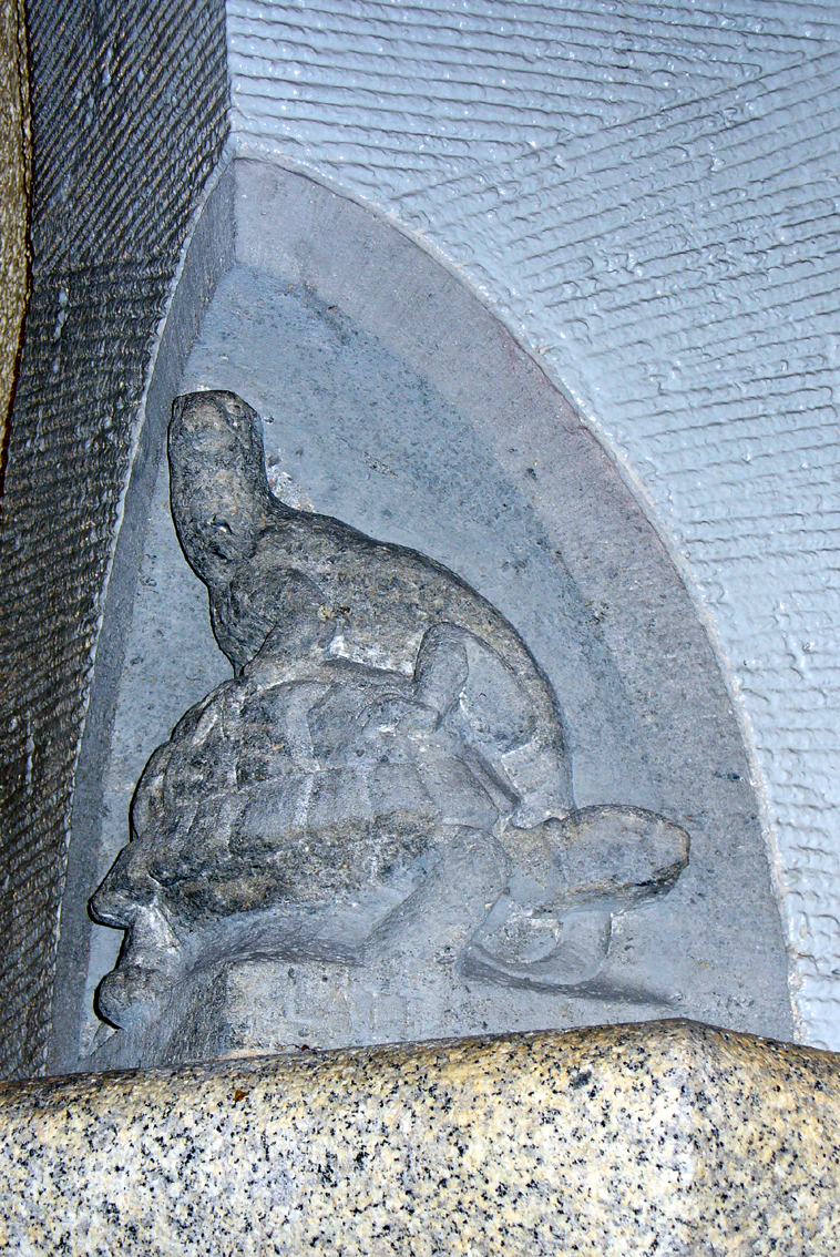 Auf Schildkrötensafari mit Elke Wallrapp (Folge 1)