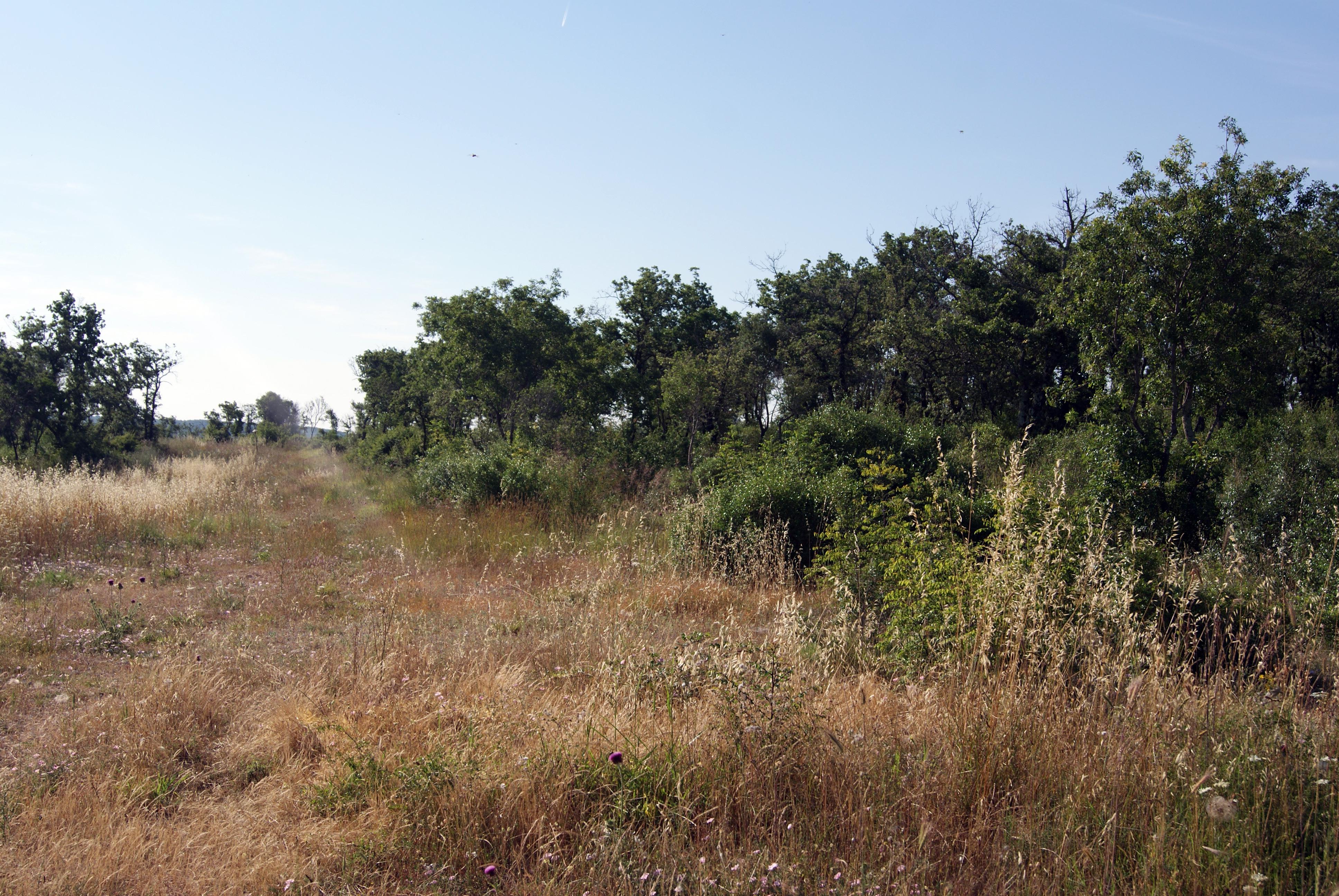 Vom Suchen und Finden - Unterwegs in Istrien (Teil 1)