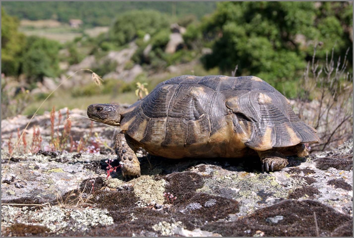 Was Habitatfotos nicht erzählen