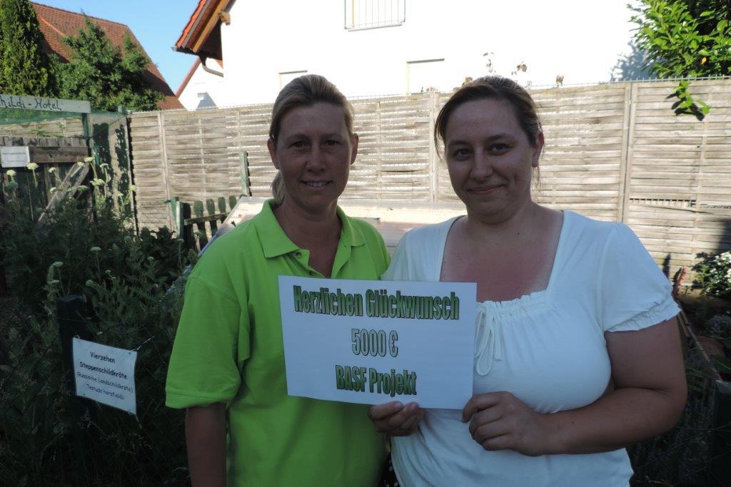 Landschildkröten Auffangstation Kitzingen gewinnt weltweiten Teamwettbewerb von BASF