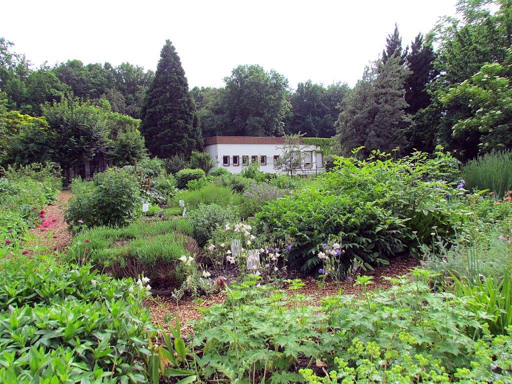 Impressionen aus dem Botanischen Garten in Chemnitz