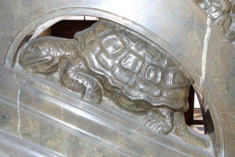 Auf Schildkrötensafari mit Elke Wallrapp (Folge 49)