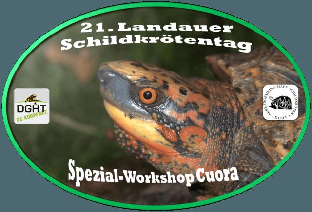 Das Programm des 21. Landauer Schildkrötentags