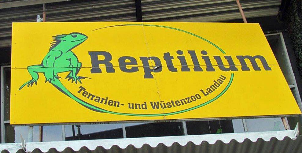 Ein Besuch im Reptilium Landau