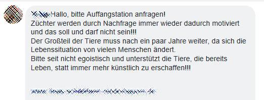 """""""Püppis"""" left the building - Ein Erfahrungsbericht"""