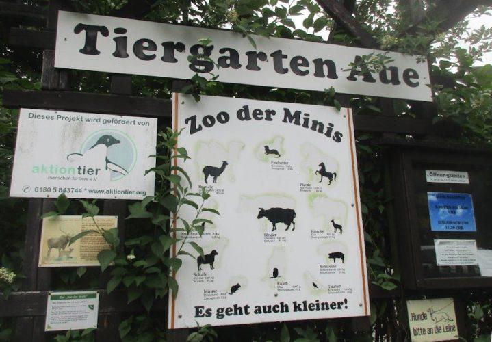 Zu Besuch im Zoo der Minis in Aue