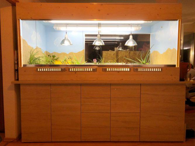 Neubau meiner Terrarienanlage für Testudo kleinmanni (Ägyptische Landschildkröten) Teil 2