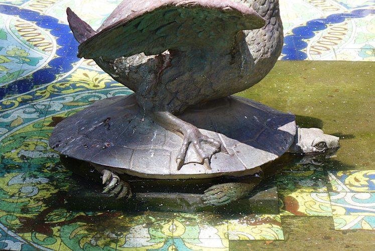 Auf Schildkrötensafari mit Elke Wallrapp (Folge 89)